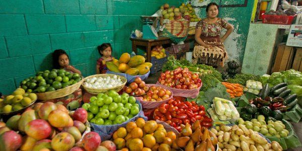 FamTrip Viaventure 2014 Guatemala Belize