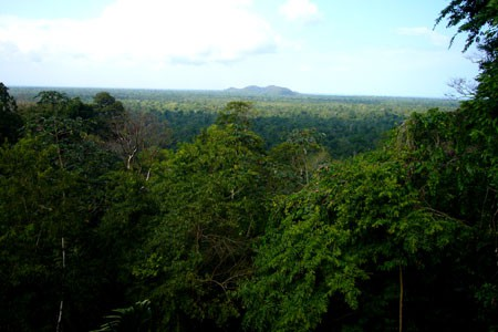 Toledo, Belize from Belcampo Lodge