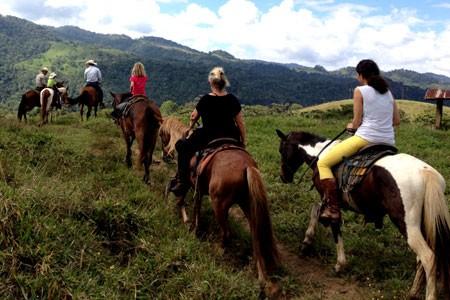 450x300_horse_riding03