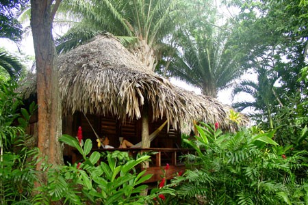 450x300_junglelodge02