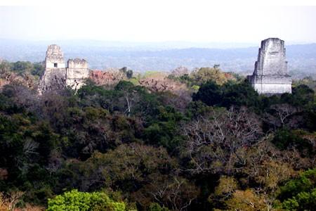 Tikal, Peten, Guatemala Central America