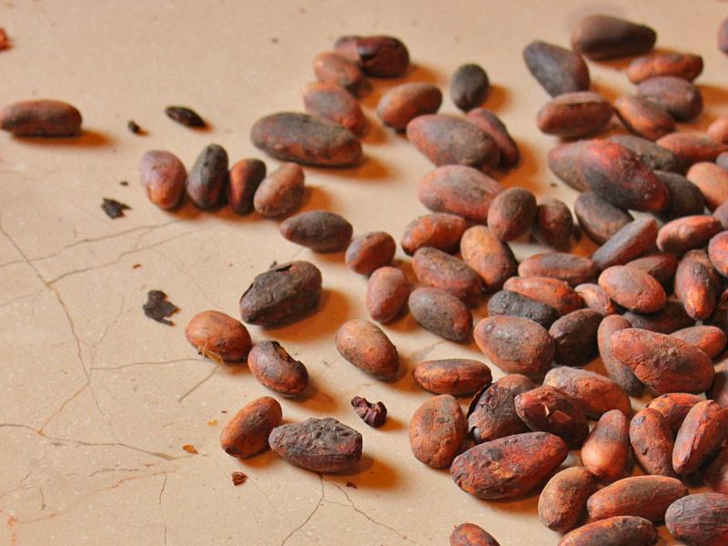 cacao-toasted-seeds