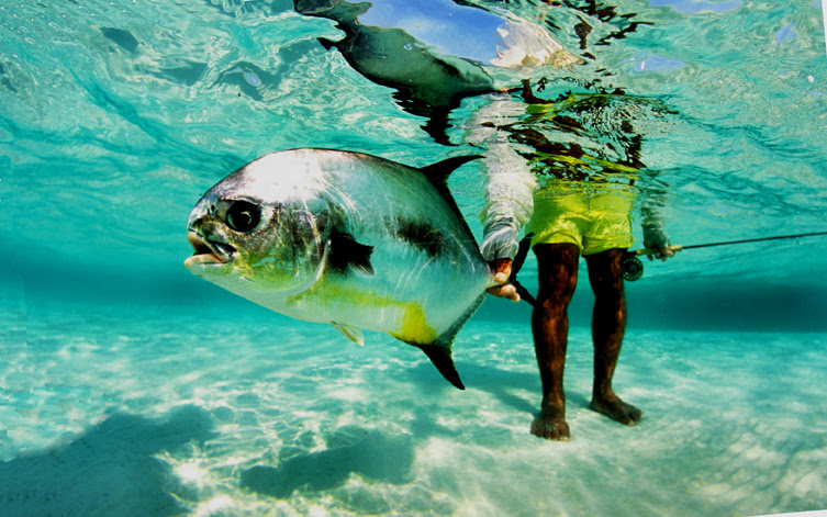 grand slam fishing in Belize with Viaventure