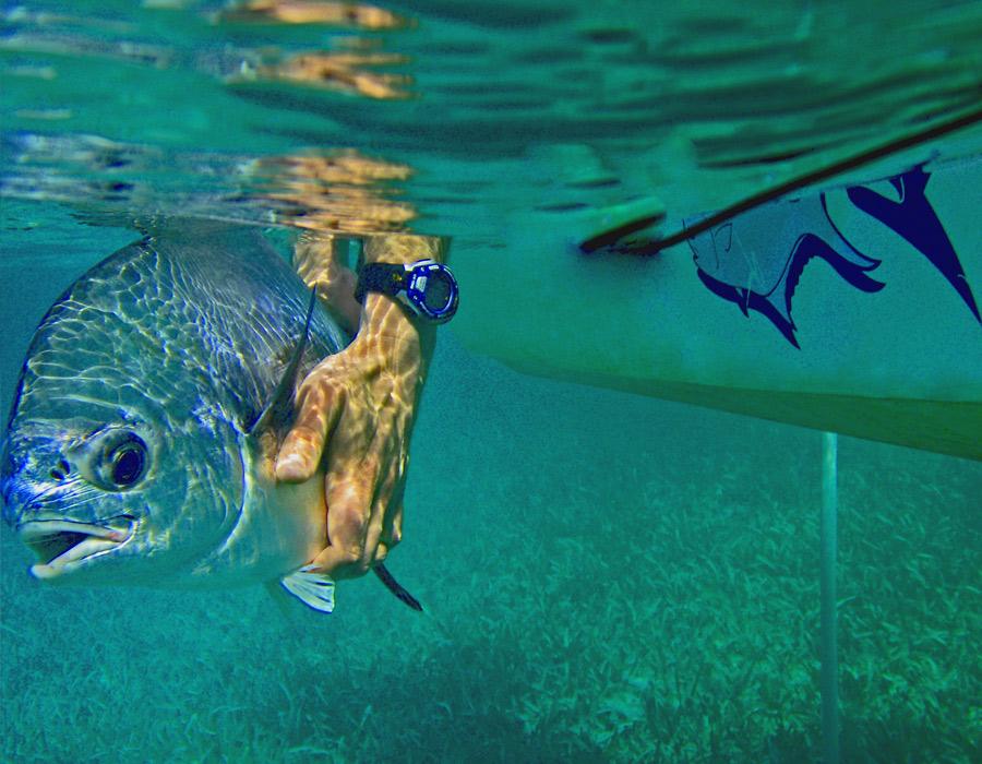 turneffe-atolls