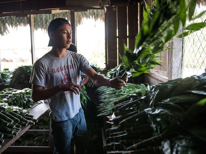villages-in-guatemala-farmers